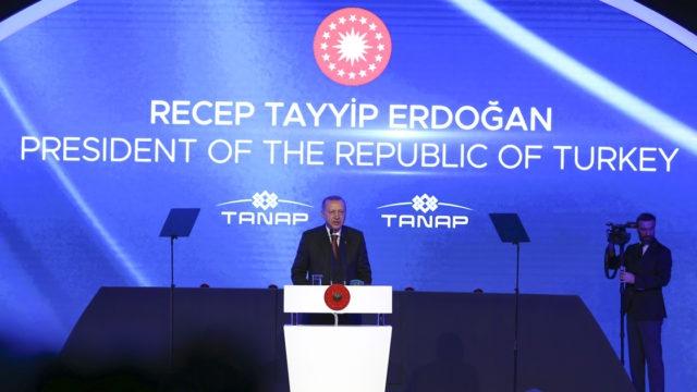 """Фото Эрдоган назвал дату запуска """"Турецкого потока"""" в обход Украины"""