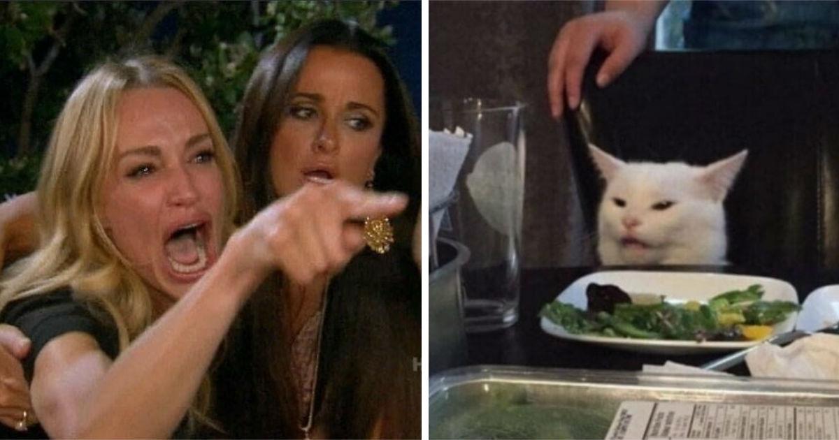 Фото Женщина и кот за столом: откуда взялся мем, где девушка орет на кота