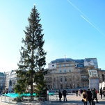 'A Present From Norway and It's Dead': Christmas Tree Unites London in Dismay