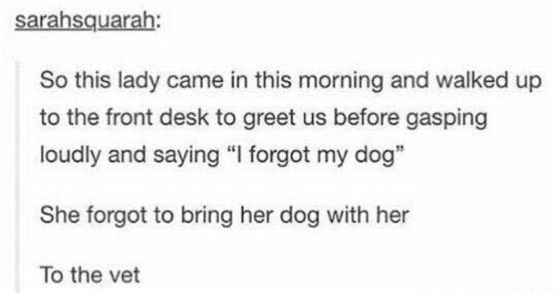 Photo of Funny Bits Of Comedy Gold From Tumblr