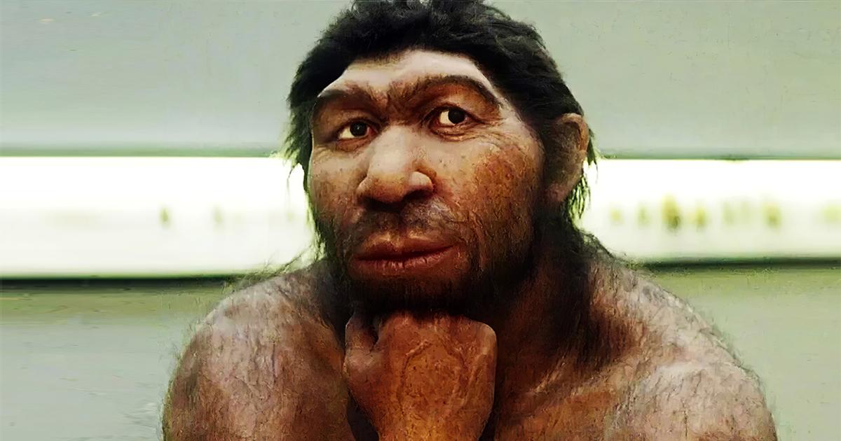Ученые нашли причину, из-за которой наши лица приобрели современный вид