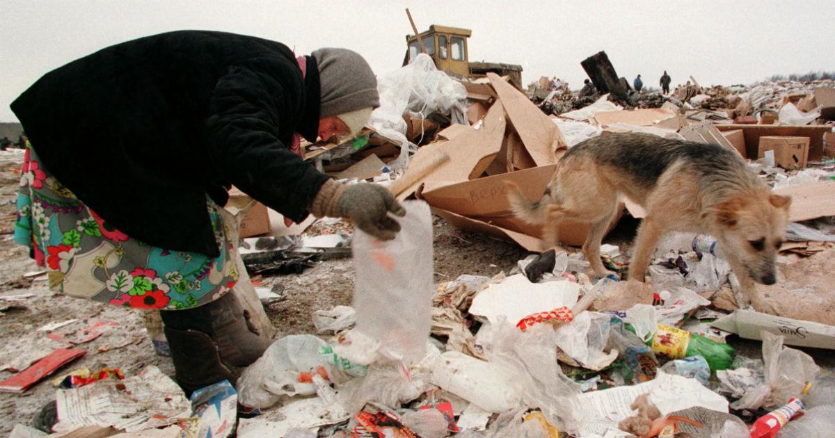 Фото Москва замусорит три российских региона. Куда повезут столичные отходы?