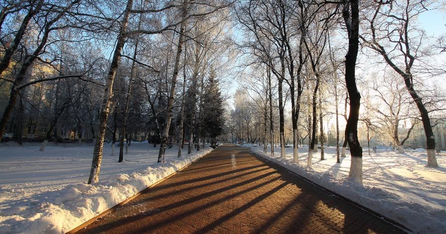 В Гидрометцентре рассказали, какая погода будет в январе