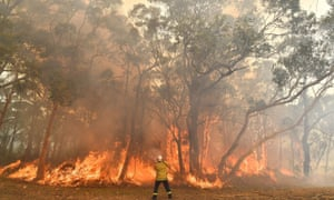 NSW fires: premier says despite 'tragic' bushfires toll, firefighters have enough resources – live