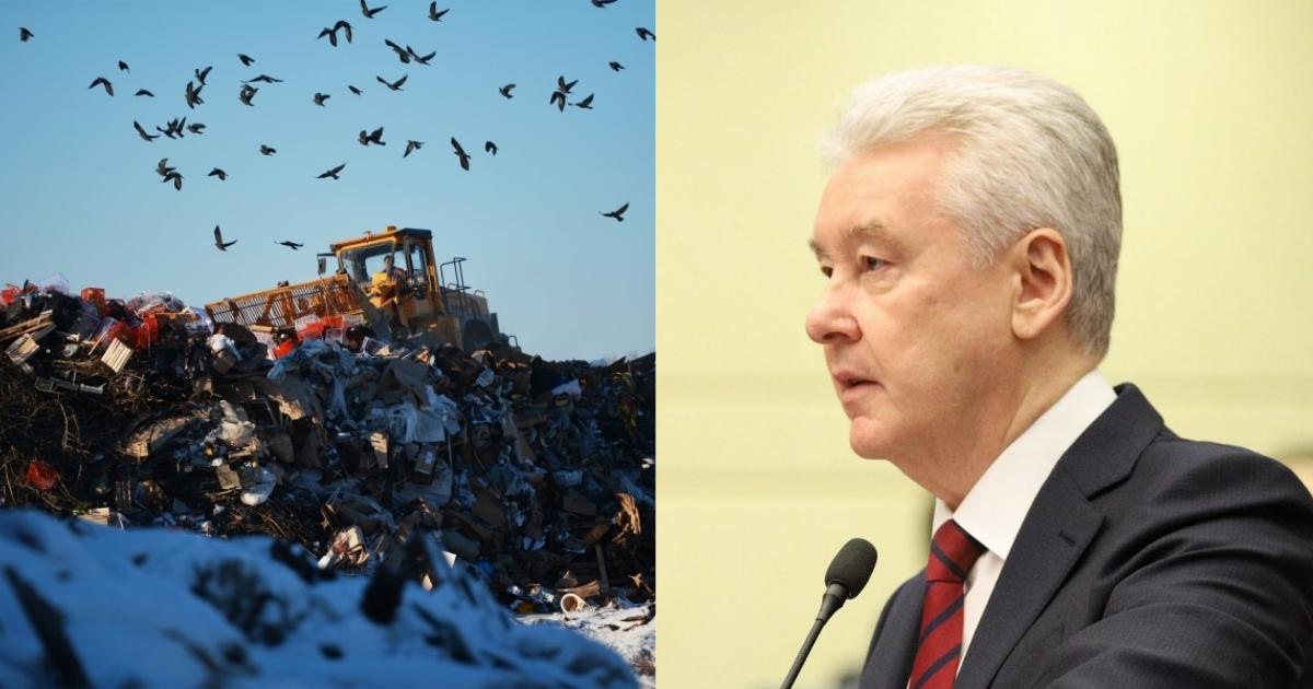 """Фото """"Дадите адресок"""": Собянин пригрозил противникам вывоза мусора в регионы"""