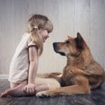 Childhood Exposure to Dogs May Reduce Risk of Schizophrenia