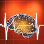 Photo of Cardio Exercise Tied to Brain Health Via Increased Gray Matter
