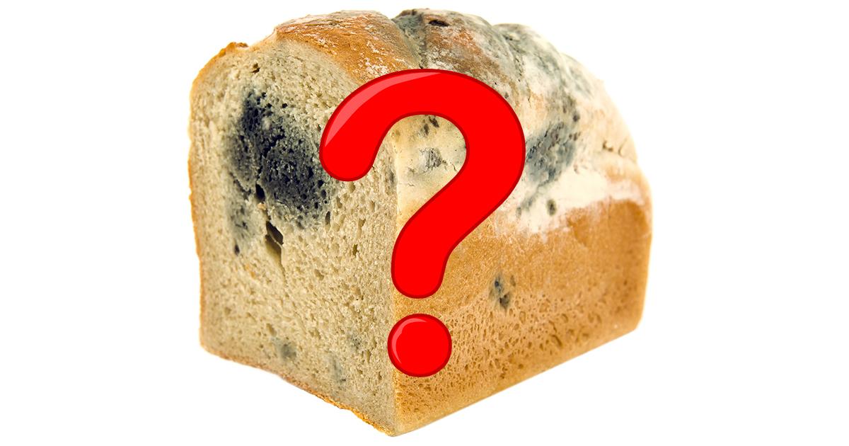 Хлеб с плесенью. Что произойдет, если его съесть?
