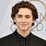 Timothée Chalamet's Next Dreamy Wes Anderson Film Finally Has a Release Date