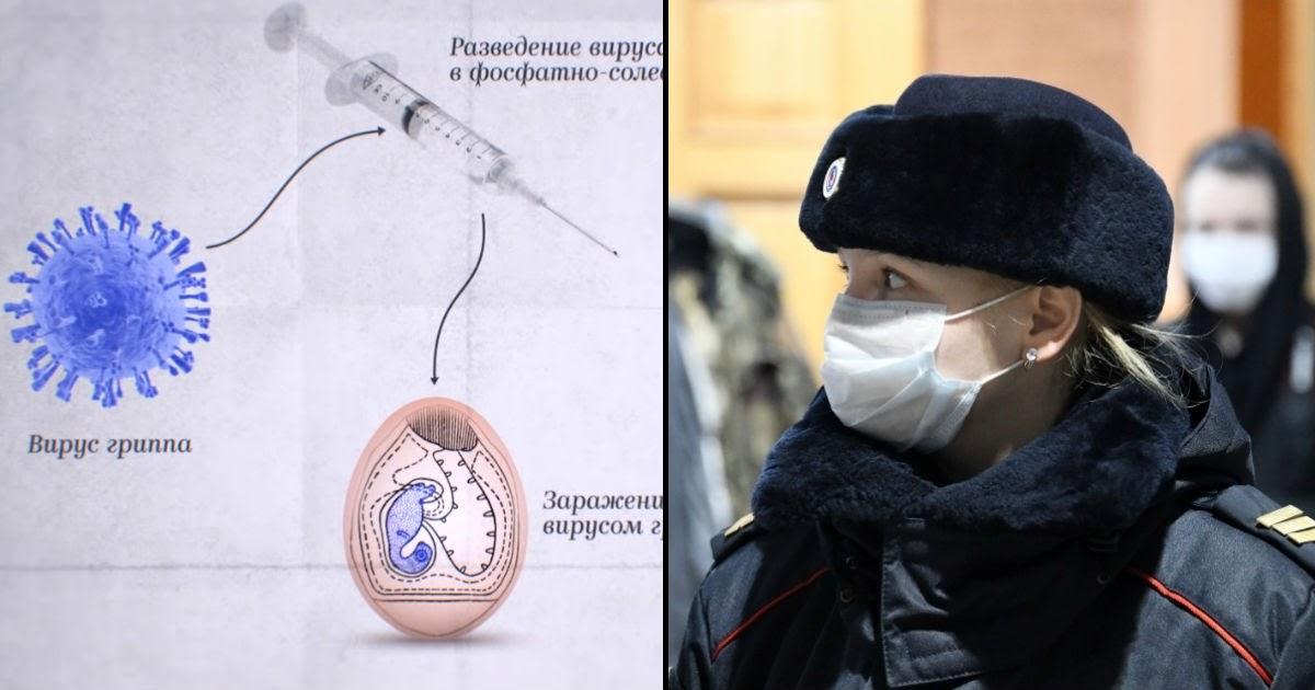 Фото ОРВИ и грипп в России в 2020-м: симптомы, лечение и профилактика