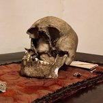 Photo of Here Lies the Skull of Pliny the Elder, Maybe