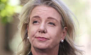Bridget McKenzie could be personally liable over sports grants, expert tells Senate hearing