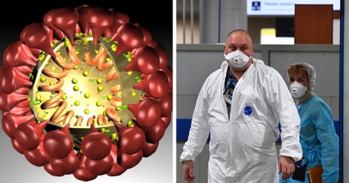 Откуда взялся коронавирус: версии появления вируса в Китае, откуда COVID-19 в Италии и России