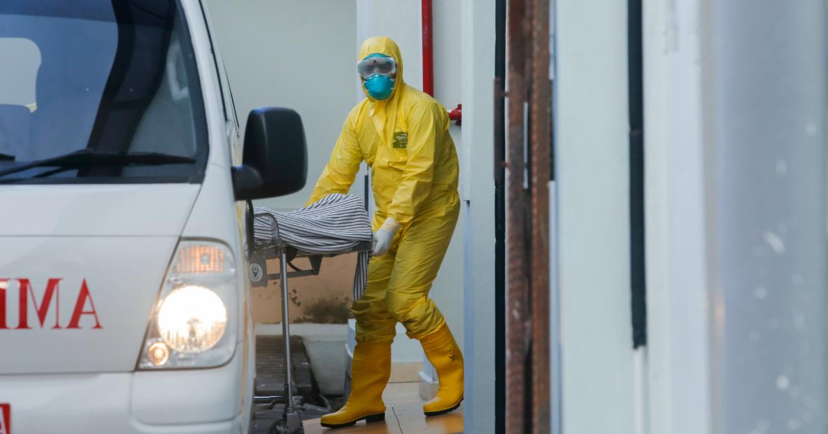 Первый умерший в северной столице: данные о пандемии на вечер 28 марта
