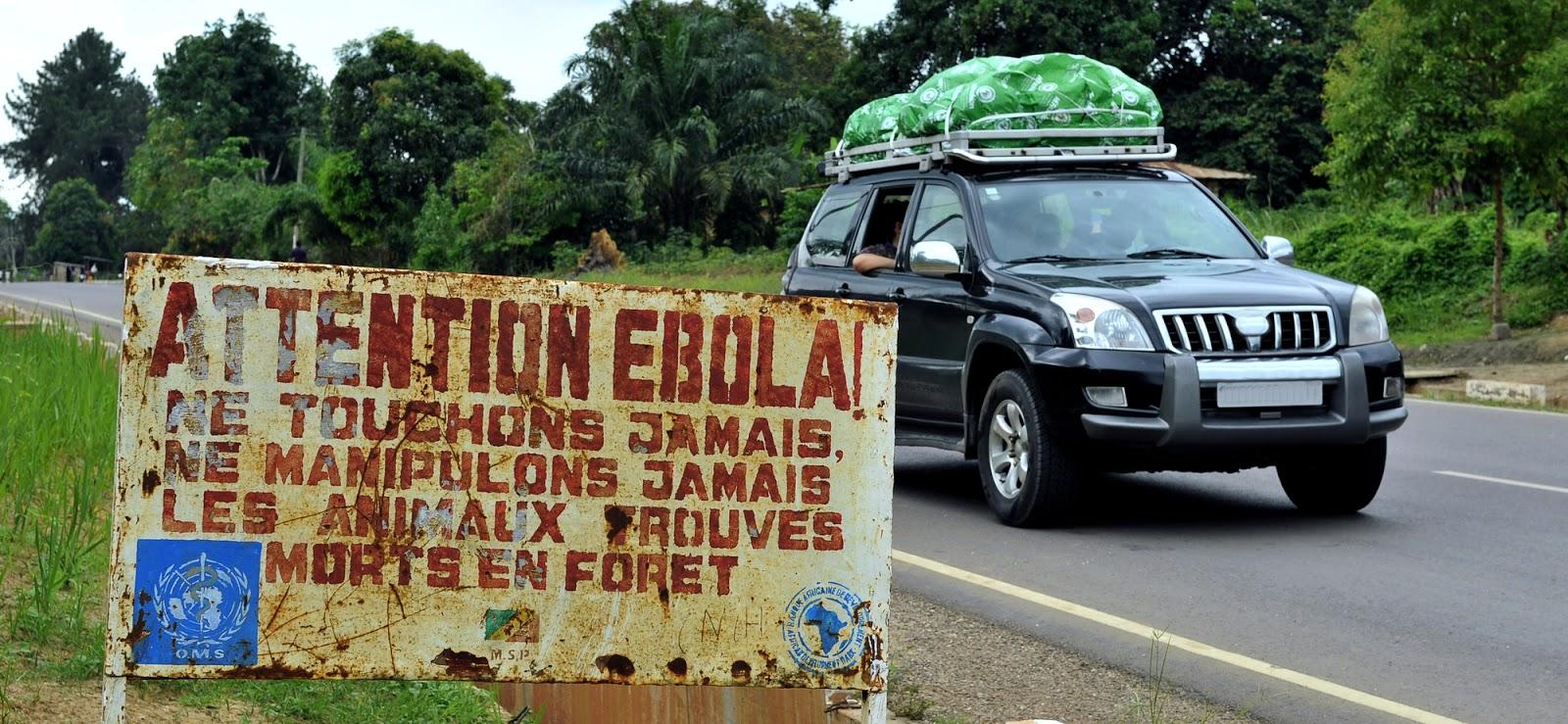 Вирус Эбола: сколько людей умерло от лихорадки Эбола? Статистика и симптомы