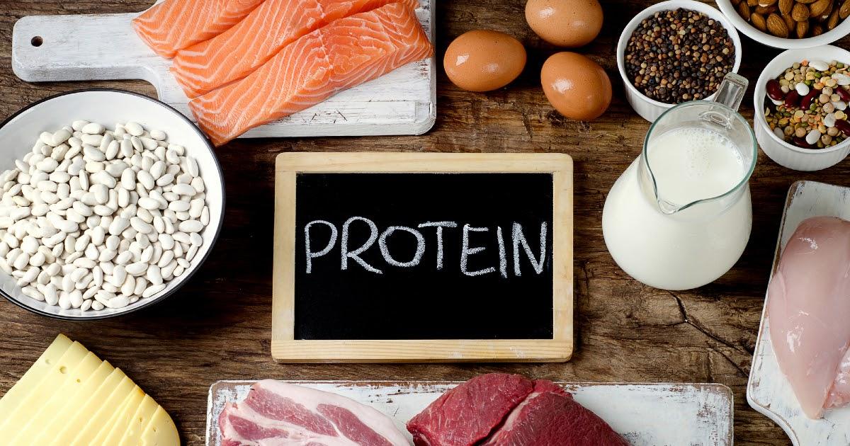 Фото Белок: структура и функции. Какие продукты - источники белков?