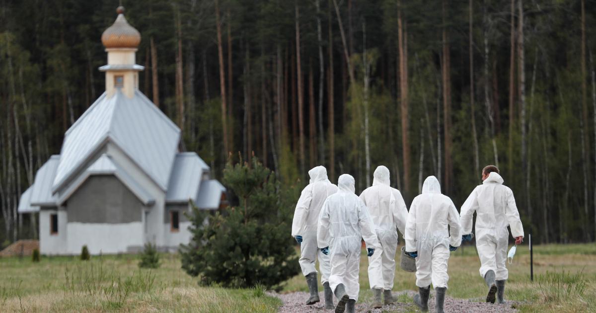 Фото Почти сто погибших за сутки: данные о пандемии к вечеру 13 мая