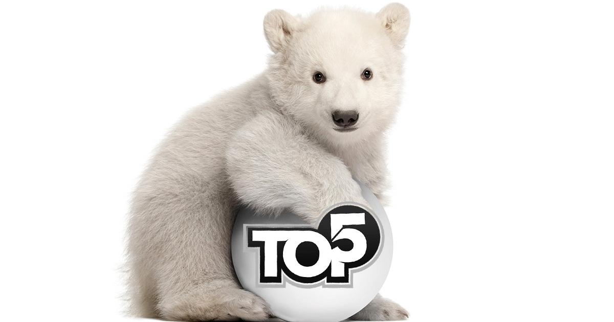 Топ-5 удивительных фактов о животных от работницы зоопарка