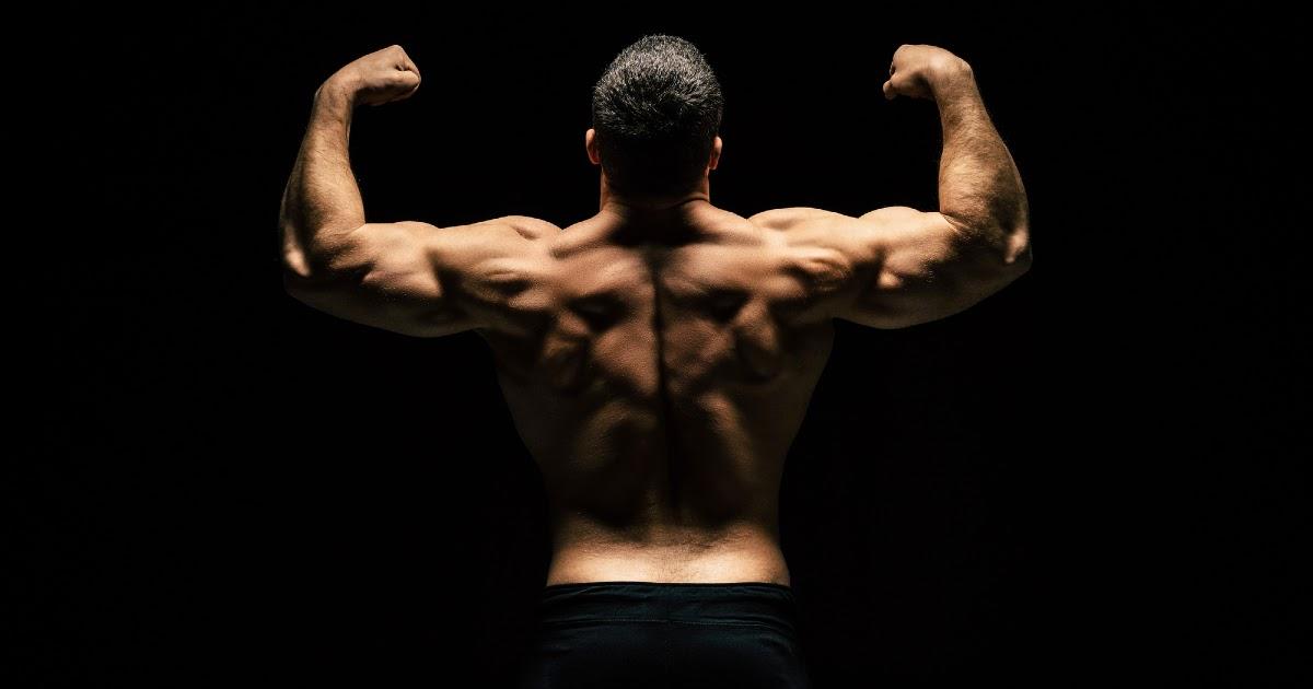 Как накачать мышцы? Как самостоятельно набрать мышечную массу