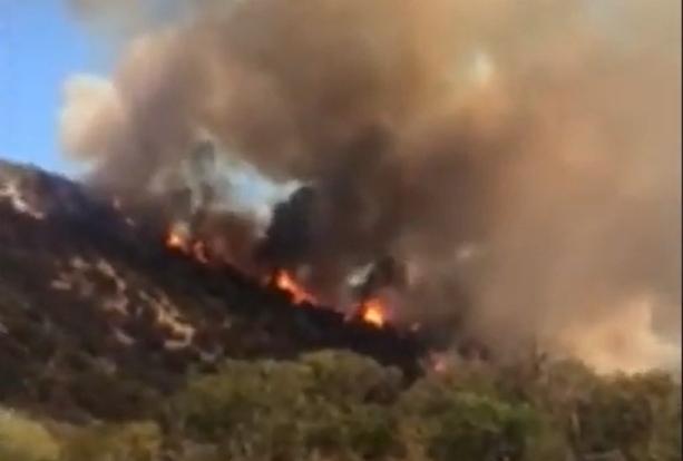 """В заповеднике """"Утриш"""" под Анапой горит около 2 гектаров леса"""