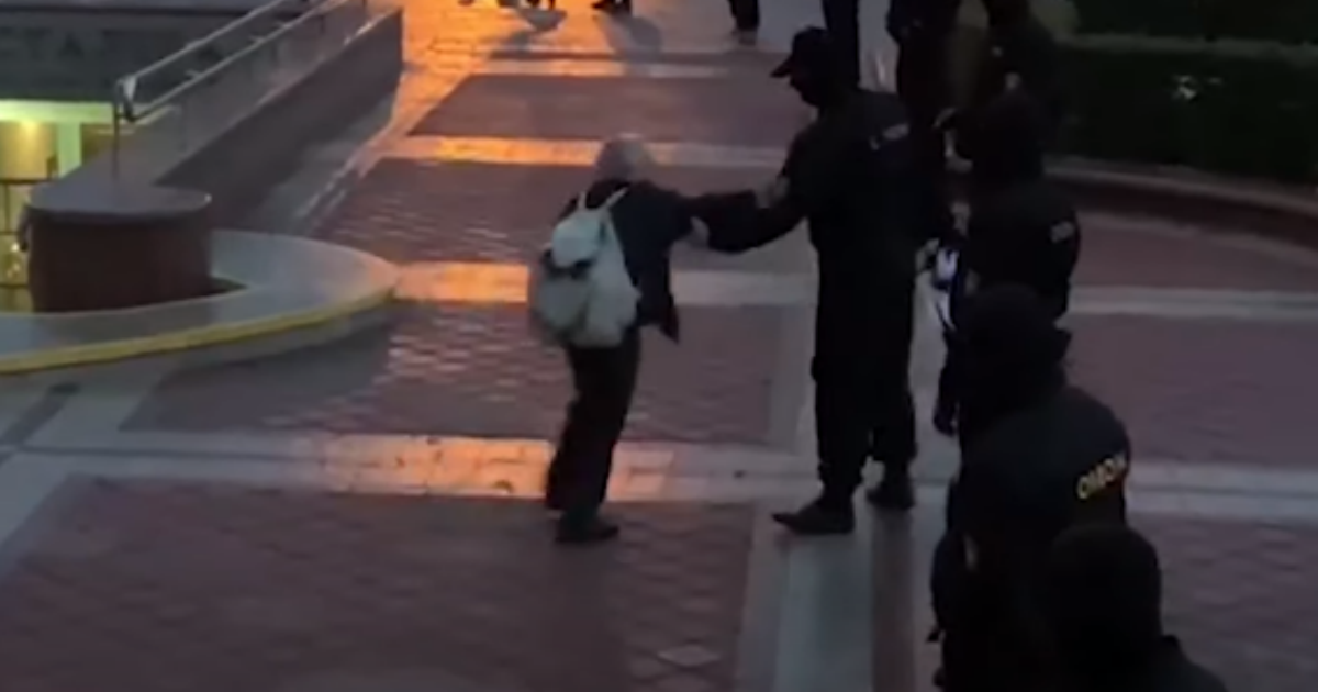 ОМОН в Минске отобрал флаг у 73-летней пенсионерки и начал ее толкать