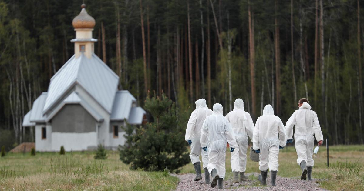 Власти назвали число погибших от коронавируса в России