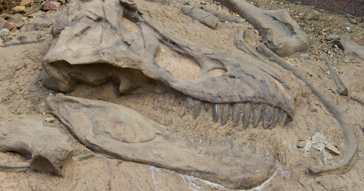 """Ученые: динозавр из """"Парка Юрского периода"""" оказался речным хищником"""