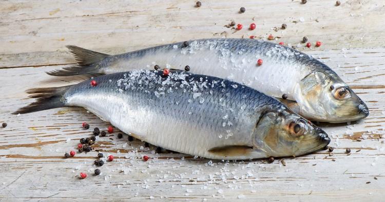 Китай ограничивает импорт рыбы из России из-за коронавируса