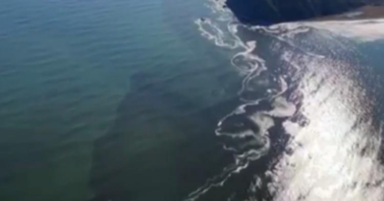 Глава Камчатки пригрозил уволить чиновников из-за загрязнения океана