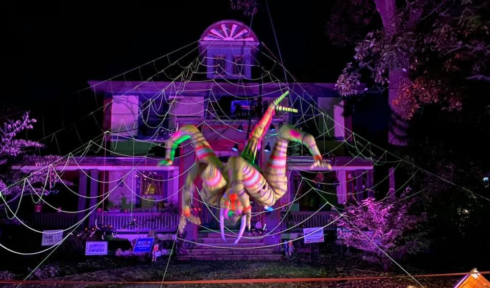 """Американец впечатлил соседей гигантским """"живым"""" пауком на Хэллоуин"""