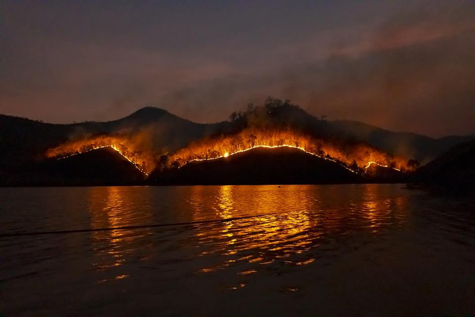 В Калифорнии введен режим масштабного бедствия из-за пожаров