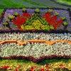 Омск меняет Правила землепользования и застройки