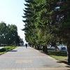 Барнаульцы выбирают территории для благоустройства в 2021 году