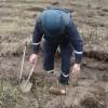 В Харьковской области за сутки обезвредили более шести десятков боеприпасов