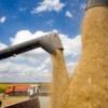 Украинские аграрии сообщили о риске обвала рынка зерновых