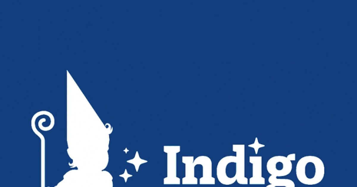 Фото Indigo Kids: Мы можем считать себя успешными разработчиками
