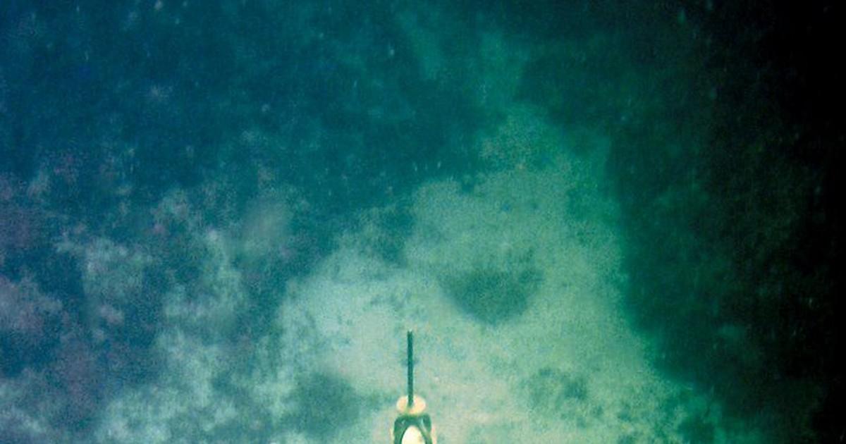 Фото Экскурсия по подводному музею Черного моря