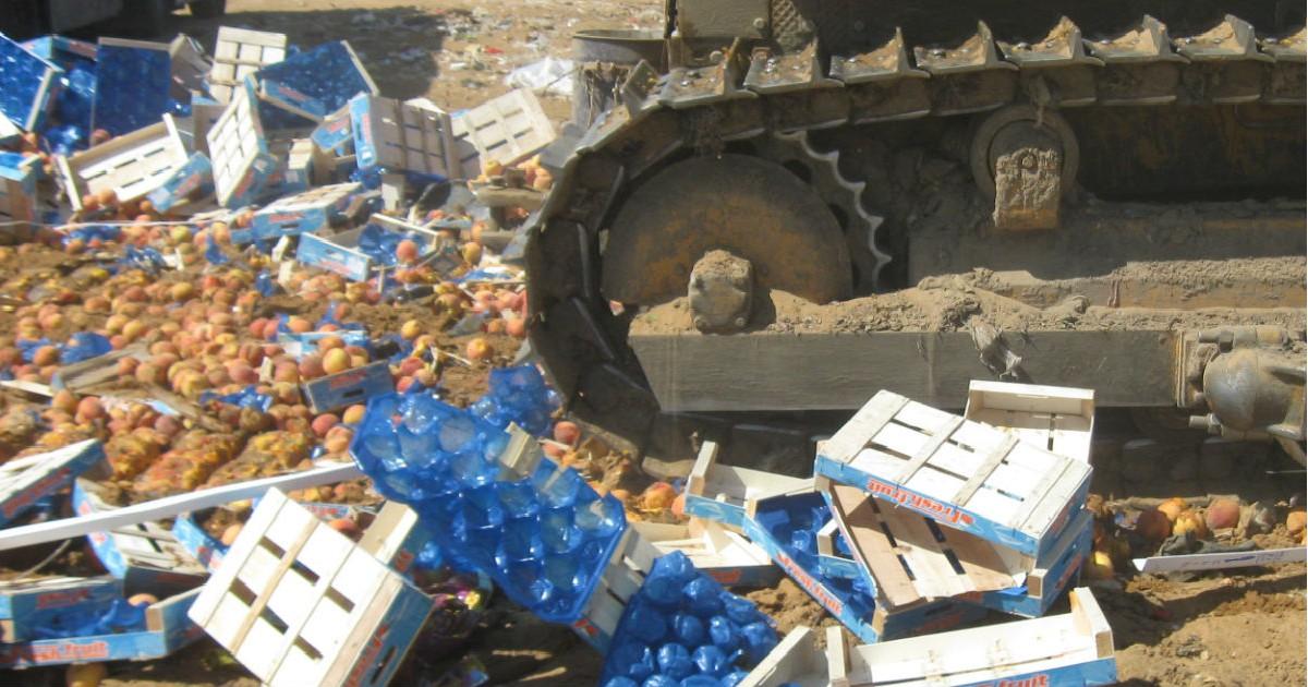 Фото Росподтребнадзор призвал прекратить уничтожение еды. Как это понимать?