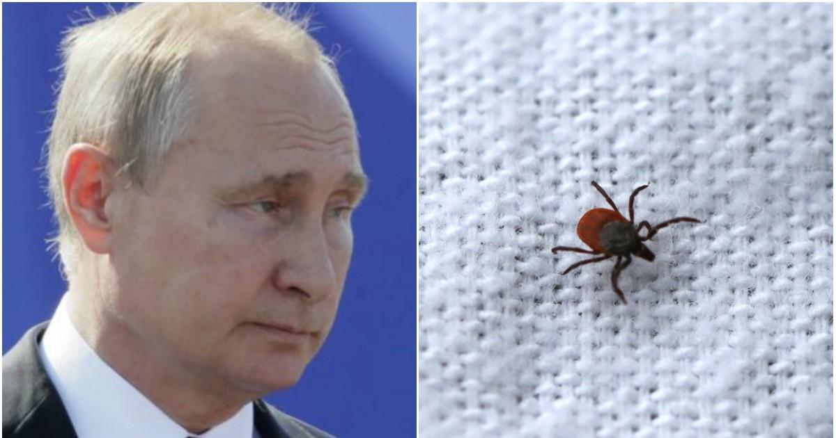 Фото Жителя Орла оштрафовали за оскорбление Путина в новости про клещей