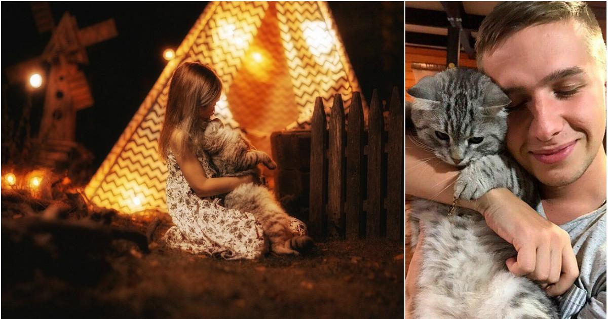 Фото Сотрудники приюта yкpaли кота 6-летней девочки в Петербурге