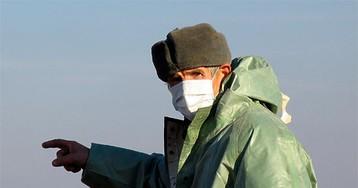 Птичий грипп, охвативший США, рвется в Россию