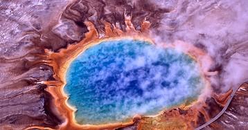 Константин Северинов: «Жизнь бактерий на самом деле тяжела и наполнена опасностями»