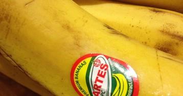 Вот что означают цифры на наклейках, которые можно встретить на фруктах!