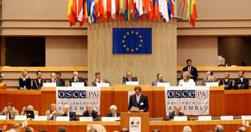 ПА ОБСЕ призвала Россию прекратить оккупацию Грузии