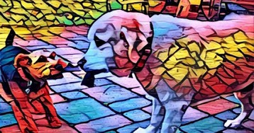 Artisto от Mail.Ru Group обрабатывает видео нейросетями