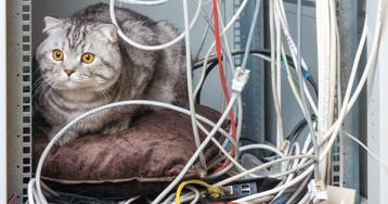 Идеи для дома: как спрятать провода