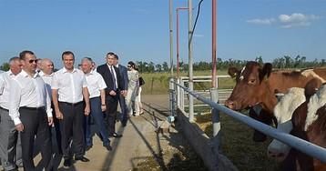 """Медведев позавидовал коровам: """"Я бы на этой ферме остался"""""""