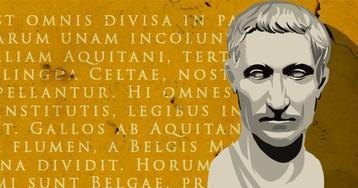 Сифилис, коала или философ: тест по латинским словам