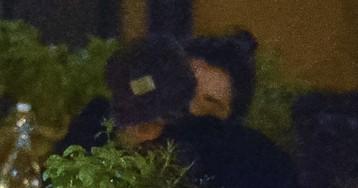 Похоже, все серьезно:  Кристен Стюарт и St. Vincent на романтическом свидании