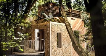Puro luxo! Casa na árvore para adultos está fazendo sucesso na Inglaterra